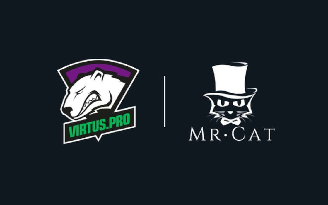 Virtus.pro and Mr. Cat partnership